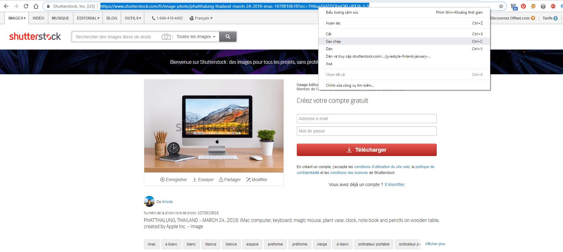 Các cách tải ảnh shutterstock miễn phí, download ảnh shutterstock không dính bản quyền