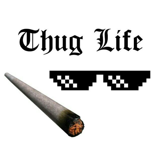 Thug life là gì? Nguồn gốc và ý nghĩa của Thug life như thế nào?